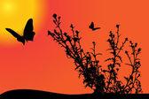 Силуэт с бабочкой на закате. — Cтоковый вектор