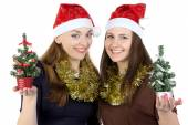 Photo of two women with christmas fir tree — Stockfoto