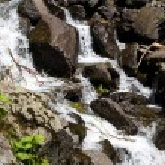 Photo of flowing water among stones — Stock Photo #79285412