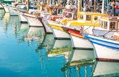 Colorful sailing boats at Fishermans Wharf of San Francisco Bay - California - United States — Stock Photo