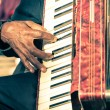 ������, ������: African musician hand playing fisarmonica Street artist performing traditional songs with accordion