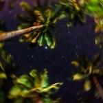 Blurred defocused sky full of stars in the jungle of El Nido - Island of Palawan in Philippines - Concept of night wonders and emotional feelings — Stock Photo #65797615