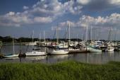 Georgia Ocean Coastal Grassland and Sailboat Landscape 4 — Stock Photo