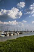 Georgia Ocean Coastal Grassland and Sailboat Landscape 2 — Stok fotoğraf