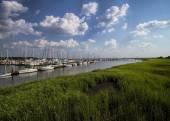 Georgia Ocean Coastal Grasslands and Sailboat Landscape 4 — Stock Photo