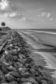 Georgia USA Atlantic Coastal Seawall in  Black and White — Stock Photo