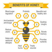 Healthy honey infographic placard. — Vettoriale Stock