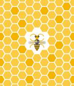 Sweet geometric pattern with honeycomb and bee — ストックベクタ