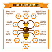 Infographic placard about benefits of honey — ストックベクタ