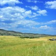 Old farm equipment in a beautiful field of wheat in Colorado — Stock Photo #52558987