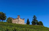 Castle of Grinzane Cavour — Stock Photo