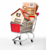 House in shopping-cart with euro bills — Stock fotografie
