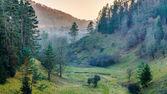 November Landscape from Franconia — Stock Photo