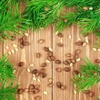 Fir branches with pine nuts. Copyspace background. — Stock Photo #62452781