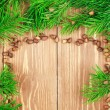 Fir branches with pine nuts. Copyspace background. — Stock Photo #62452807