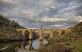 Alcantara bridge. HDR — Stock Photo