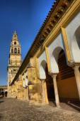Bell tower of the mosque — Foto de Stock