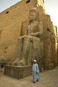 Pharaonic sculpture at Luxor Temple in Egypt — Stock Photo