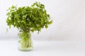 Vaso di vetro pieno di prezzemolo fresco — Foto Stock