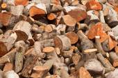 Firewood at home — Stock Photo