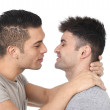 Gay homosexual couple young attractive handsome men in love kissing — Stock Photo #64478731