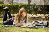 Young beautiful student girl on campus park grass with books studying happy preparing exam in education concept — Stok fotoğraf