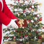 Gift giving for Christmas — Stock Photo #54250833