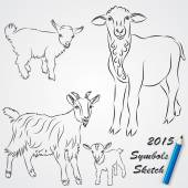 Vector sketch drawing of goats, Chinese 2015 new year symbol — Stock Vector