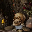 Still life with a human skull with desert plants, cactus, roses — Stock Photo #53211749