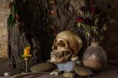 Still life with a human skull with desert plants, cactus, roses  — Stok fotoğraf