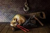 Still Life with a Skull. — Stock Photo