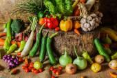 натюрморт овощей, трав и плодов. — Стоковое фото