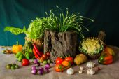 Still life  Vegetables, Herbs and Fruits. — 图库照片