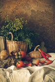 Still life  Vegetables, Herbs and Fruits. — Photo