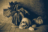 Still Life Skull and pumpkin on the timber. — Stock Photo