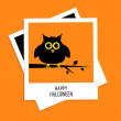 Instant photo with owl. Happy Halloween card. — Stock Vector #53390461