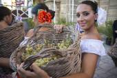 Woman with basket full of grapes — ストック写真