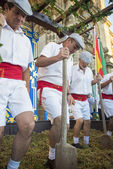 Traditional grape stomp in Sherry — ストック写真