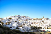 Landscape of a white town, Vejer de la Frontera in Andalusia, Sp — Stock fotografie