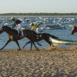 Horse racing on the beaches of Sanlucar — Stock Photo #78233760