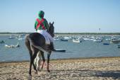 Horse racing on the beaches of Sanlucar — Stock Photo