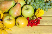 Apples, grapes, pear and red viburnum — Stock Photo