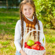 Little girl holding a basket of apples — Stock Photo #59485197