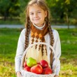 Little girl holding a basket of apples — Stock Photo #59485199