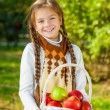 Little girl holding a basket of apples — Stock Photo #59485201