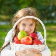 Little girl holding a basket of apples — Stock Photo #59485203