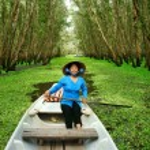 Постер, плакат: Tra Su indigo forest Vietnam ecotourism