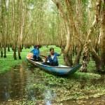 ������, ������: Tra Su indigo forest Vietnam ecotourism