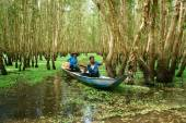 Tra Su indigo forest, Vietnam ecotourism — Stock Photo