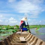 Vietnamese village, row boat, lotus flower, lotus pond — Stock Photo #55600479